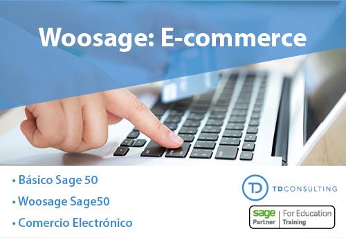 Curso E-commerce Woosage con Sage 50